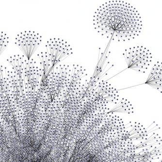 Connecting_Dots_Pusteblumen