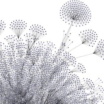 Connecting_Dots_Pusteblumen